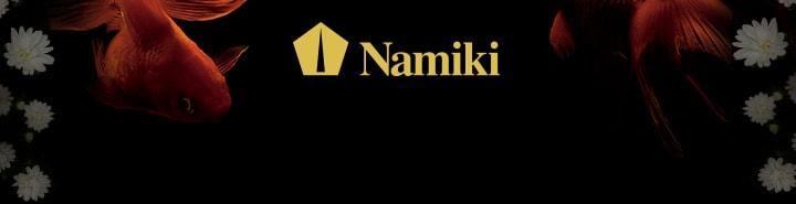 Pilot Namiki : the fine art pens